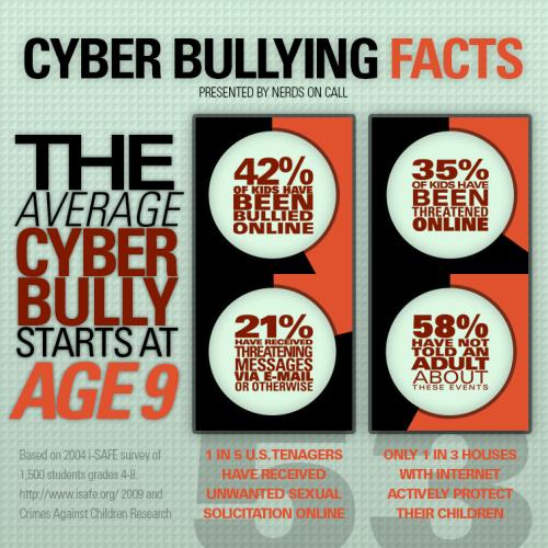 Cyber bully statistics