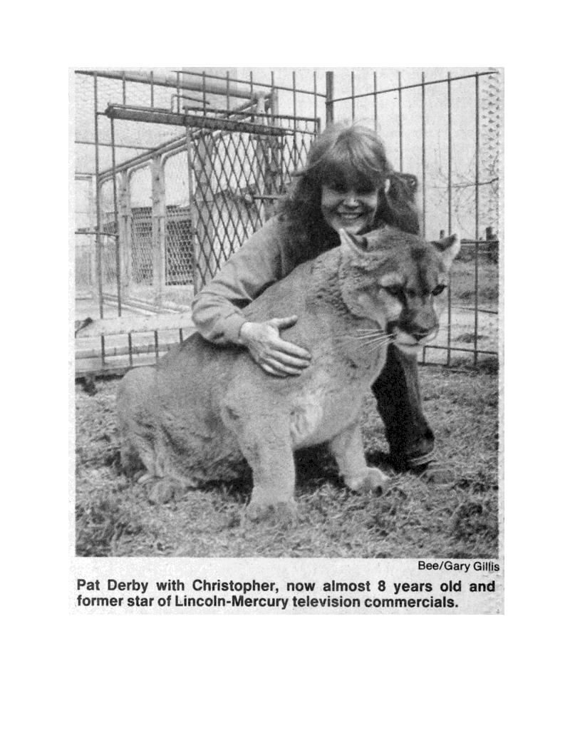 cougar pat