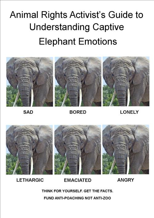Handy guide for animal rights activists to determine emotions of elephants