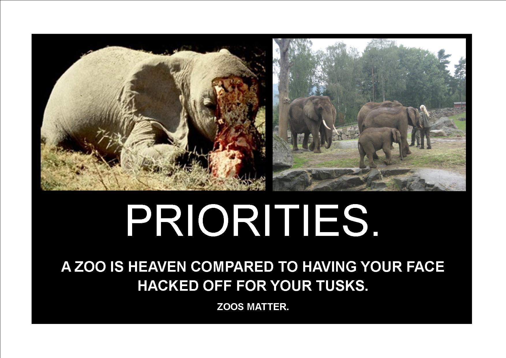 why zoos are necessary for the Not all animal rights activists love animals some respect them because they  understand animals have a place in the world zoos, especially.
